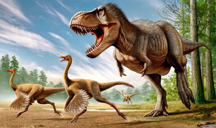A painting of a tyrannosaurus rex chasing two smaller theropod dinosaurs in an open plain