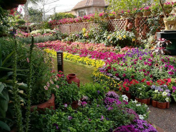 A private garden in Lahore.