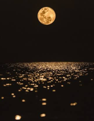 Full Moon hovering above the ocean.
