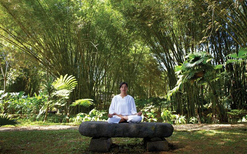 Yoga getaway tourism